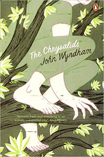 The Chrysalids Audiobook - John Wyndham Free
